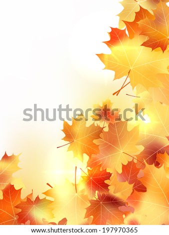 Background with maple autumn leaves. plus EPS10 vector file - stock vector
