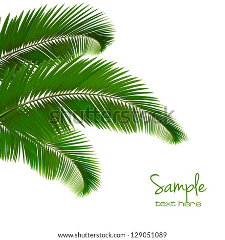 Background with palm leaves. Vector illustration - stock vector