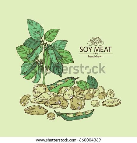 Search photos soybean  enfotoliacom