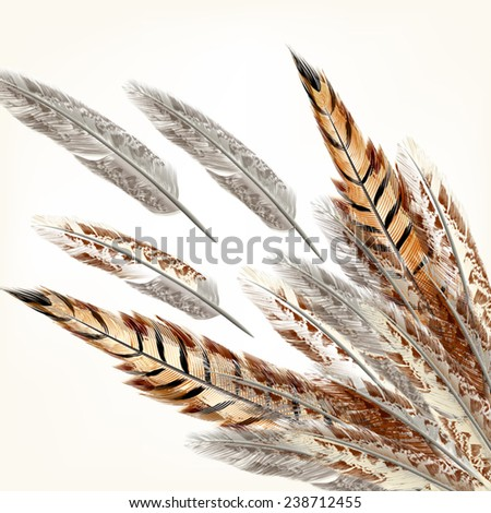 Background with vector realistic multicolored feathers - stock vector