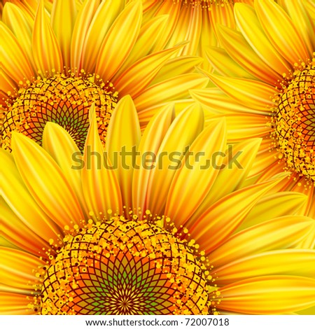 Background with yellow sunflowers. Mesh. Clipping Mask