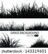 Backgrounds of fresh spring grass.Vector illustration. - stock vector
