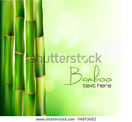 Bamboo background. Vector illustration. - stock vector
