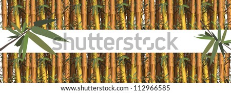 Bamboo frame made of bamboo shoots (a tropical plant) - stock vector
