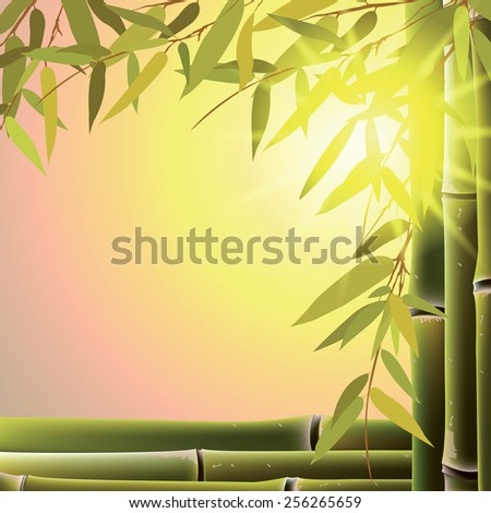 Bamboo trees and leaves at sunset time. Vector illustration. - stock vector