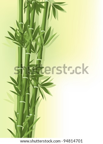 Bamboo with silhouette on the old paper background - stock vector