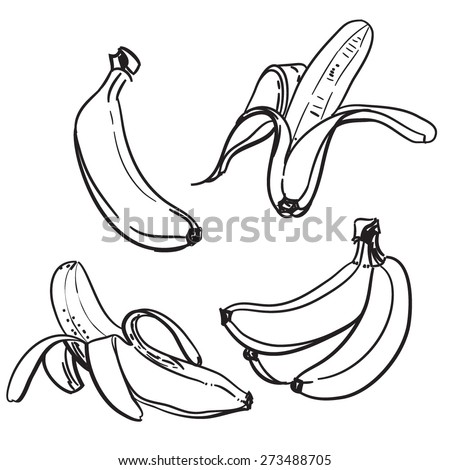 Banana Food Fruit Outline Sketch