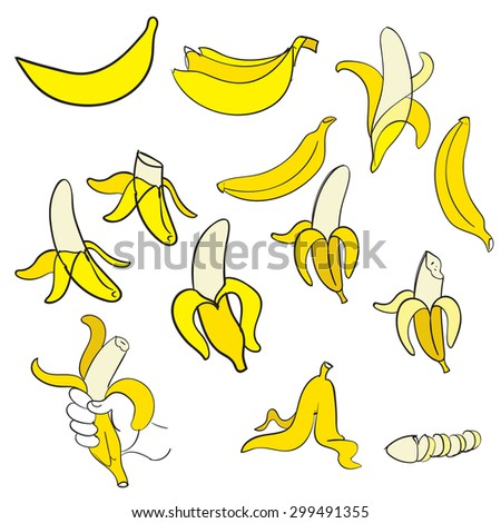 Banana or bananas collection in vector on white background - stock vector