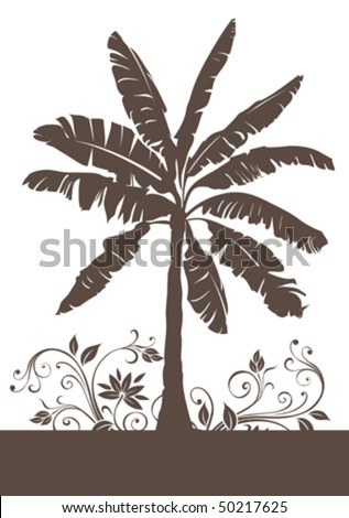 Banana palm tree - stock vector