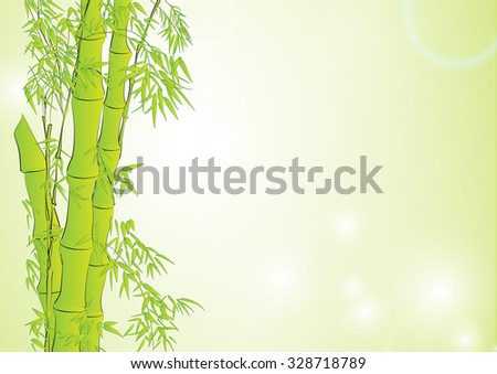 Banboo in light green background