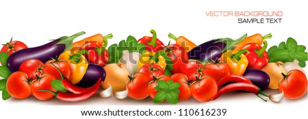 Banner made of fresh colorful vegetables. Vector illustration. - stock vector