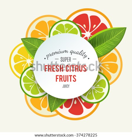 Banner with stylized citrus fruit and splashes. Grapefruit, lime, lemon and orange. Citrus mix isolated on white background can be used for cafe menu design. Bright stylish juicy icon design. Vector - stock vector