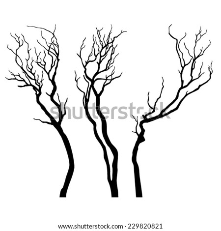 Bare branches isolated on white background - stock vector