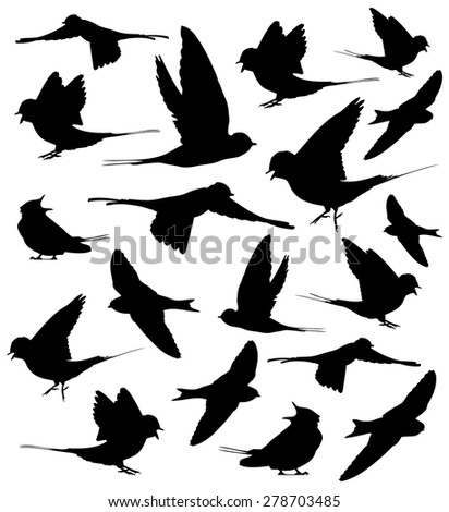Barn swallow set silhouettes