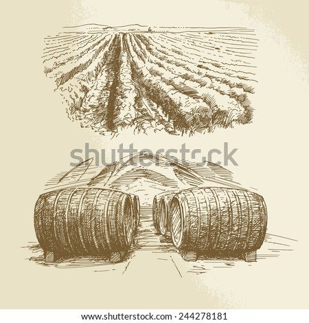 barrels, vineyard, harvest, farm - hand drawn collection - stock vector