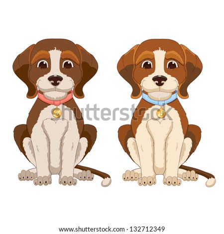 Beagle dog - stock vector
