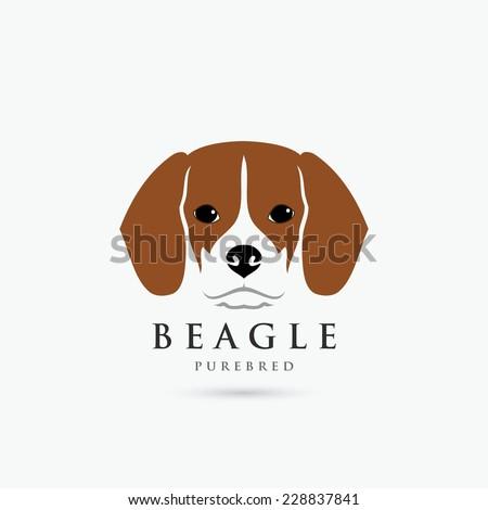 Beagle dog - vector illustration - stock vector