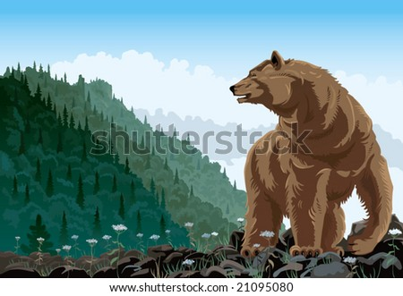 Bear in mountain landscape rises on a grief. - stock vector