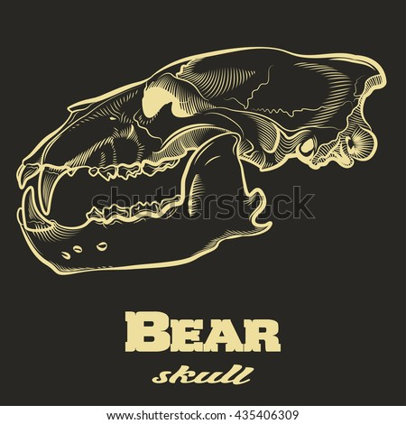 Bear Skull Engraving Style Etching Label