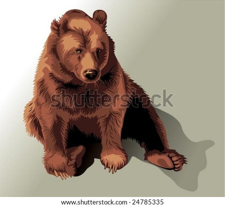 bear - vector - stock vector