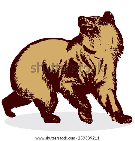 Bear. Vector. 1. Illustration. - stock vector