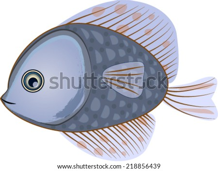 Beautiful blue fish isolated on white