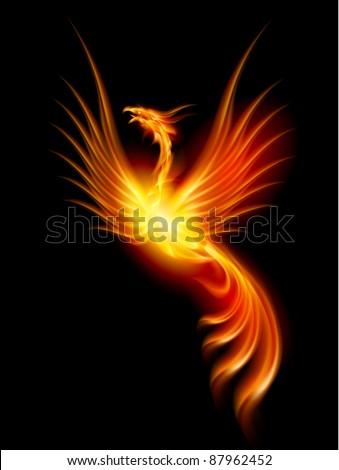 Beautiful Burning Phoenix. Illustration isolated over black background - stock vector