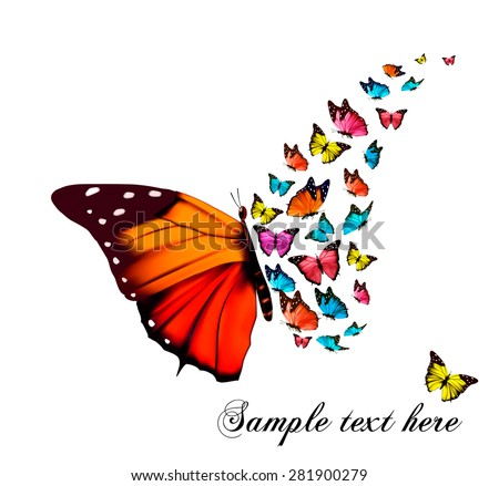 Beautiful butterfly background. Vector. - stock vector