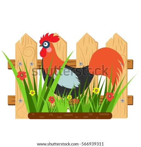 Beautiful Card With A Cartoon Rooster Fence And Grass Flowers Vector Illustration