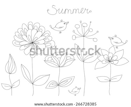 beautiful contour drawing of summer flowers and birds with the words summer