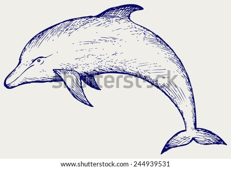 Beautiful dolphin jumping in the water. Doodle style - stock vector
