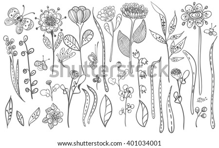 Beautiful doodle grass and flowers silhouette, natural collection, Vector