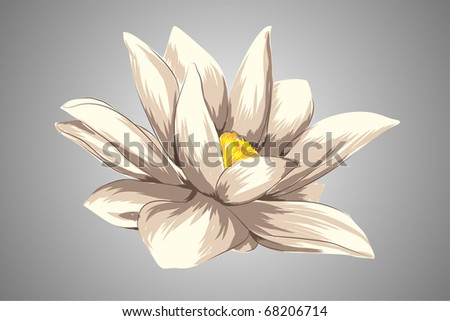 beautiful Floral vector background (light flower on gray) - stock vector