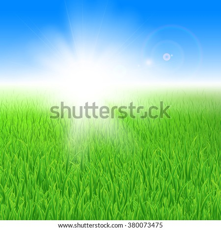 Beautiful green lawn with grass under the sun - stock vector