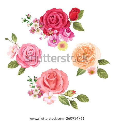 Beautiful isolated flowers on the white background - stock vector
