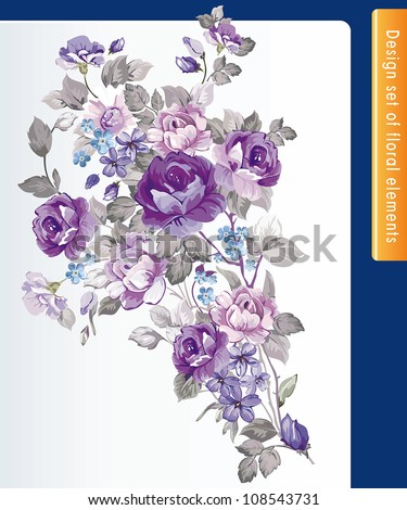 Beautiful isolated flowers on the white background with element for design. - stock vector