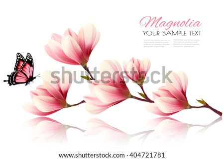 Beautiful magnolia branch with a butterfly. Vector. - stock vector