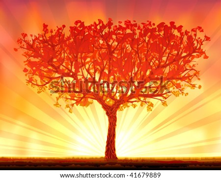 Beautiful orange autumn sunset tree (.JPG version id 44520364, other landscapes are in my gallery)