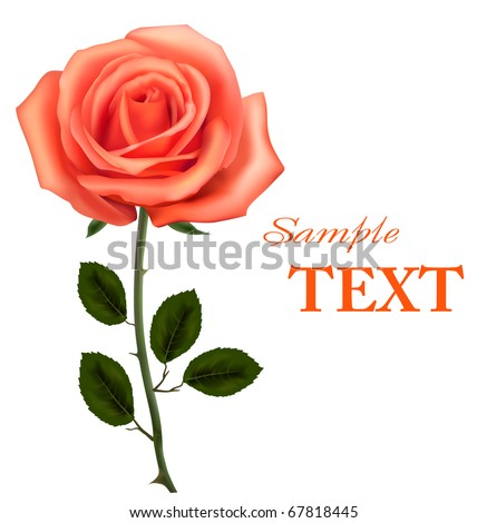 Beautiful orange rose with leaves isolated on white. Vector illustration - stock vector