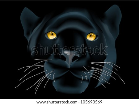 Beautiful panther face on black background - stock vector