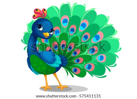 Peacock Stock Images Royalty Free Images amp Vectors