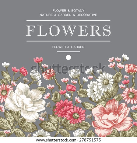 Beautiful pink and white flowers. Vintage Greeting Card with Blooming Flowers. Place for Your Text. Peonies, chamomile, Wildflowers, Vector Illustration. - stock vector