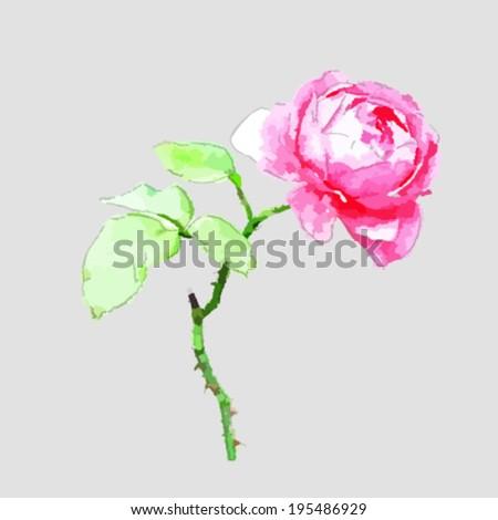 Beautiful Pink flower, Watercolor painting - stock vector