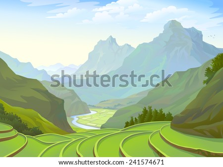 Beautiful plantation fields in a spectacular valley - stock vector
