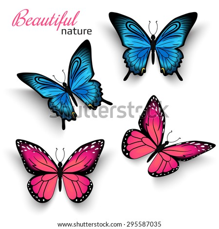 Beautiful realistic butterfly with shadows isolated on white. Vector illustration of tropical blue and red butterflies. Realistic nature butterfly for graphic decoration - stock vector