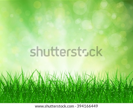 Beautiful spring background with grass and bokeh lights. vector background summer design  green garden nature illustration. morning sunlight grass early dew. eco background