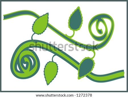 beautiful vector art illustration, poisson ivy with green leafs, framed pattern - stock vector
