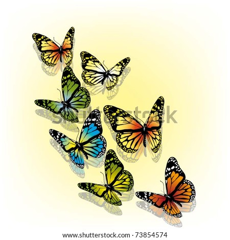 beautiful vector illustration with colorful butterflies - stock vector