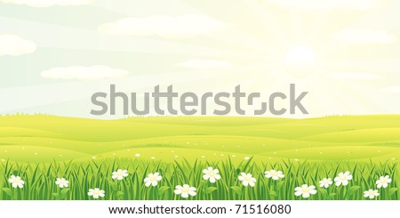 Beauty Summer, Spring Quiet Panoramic Landscape with Clear Sky, colorful cartoon  vector illustration - stock vector