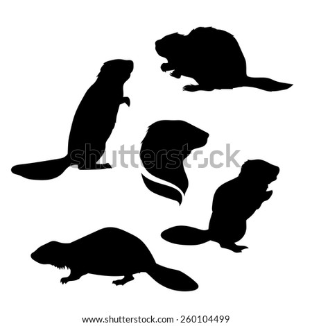 beaver silhouette stock images  royalty free images puma logo vector corel puma logo vector image